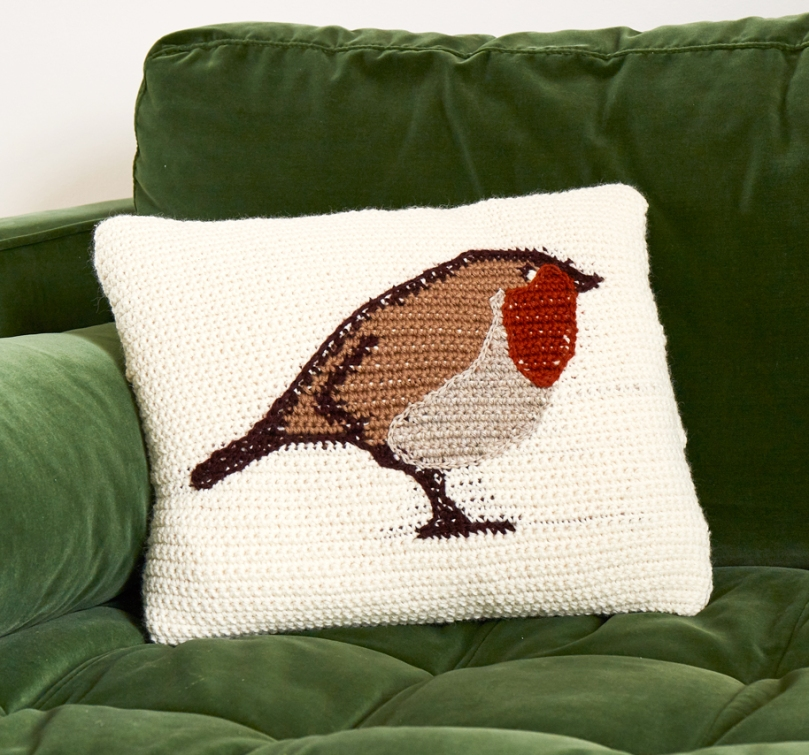 robin cushion.jpg